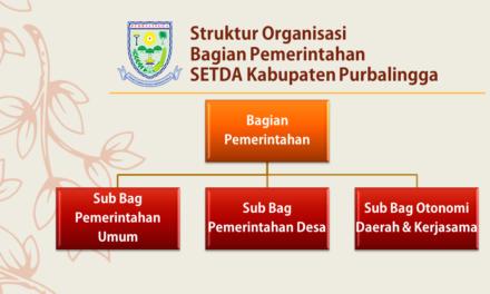 Struktur Organisasi Bagian Pemerintahan